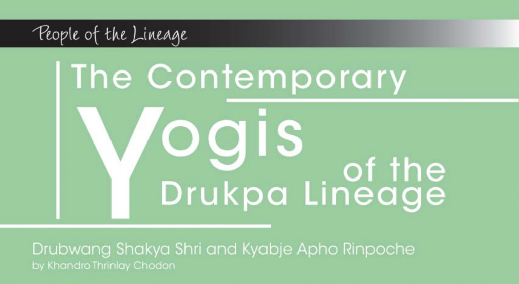 Yogis of the Drukpa lineage