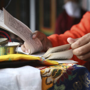 Buddhist Study Groups